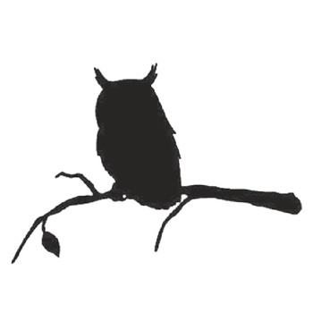 Owl 200mm High x 300mm Wide x 3mm Thick 52 10