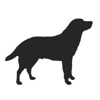 Dog 170mm High x 175mm Wide x 3mm Thick 53 4